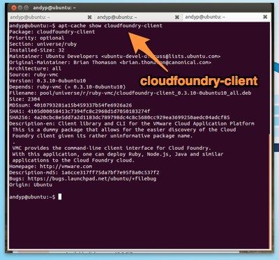 Cloudfoundry client